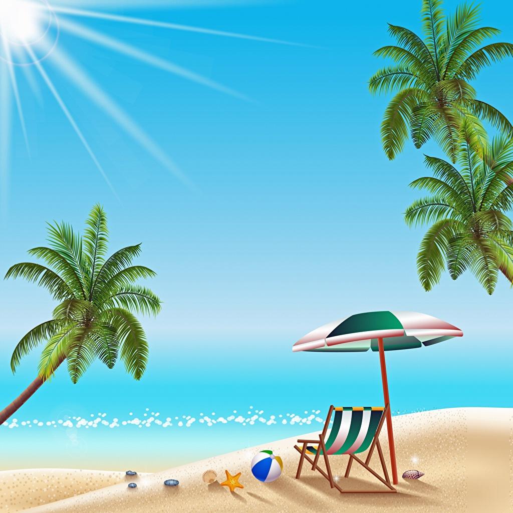 Фото Пляж Море Отдых Солнце Природа Пальмы Шезлонг Векторная графика пляжа пляже пляжи солнца релакс отдыхает пальм пальма Лежаки