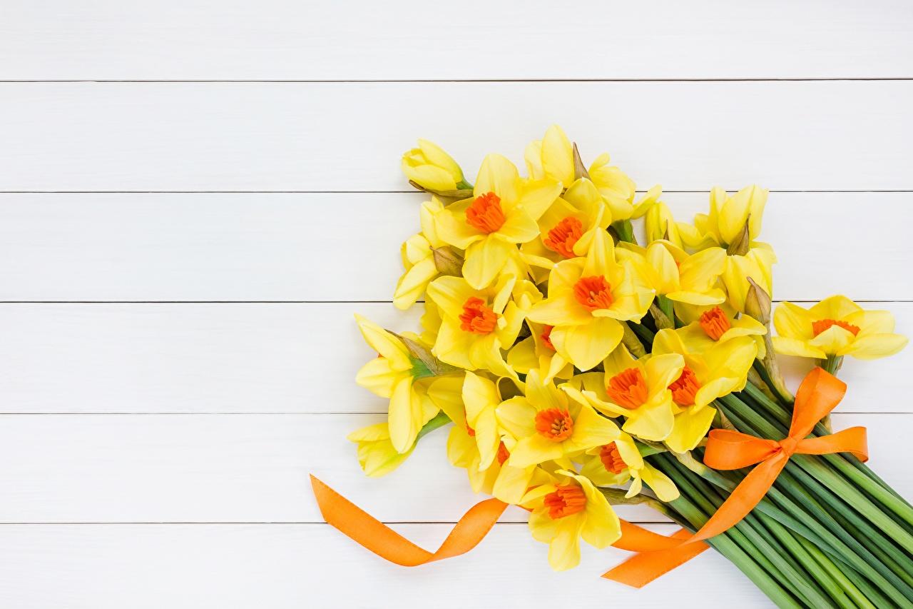 Фотография Букеты желтая цветок Нарциссы желтых желтые Желтый Цветы