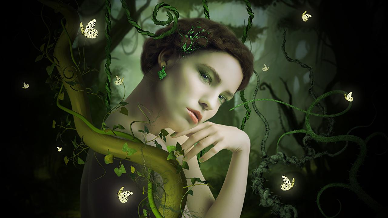Картинки Феи бабочка Фэнтези Девушки Бабочки девушка Фантастика молодая женщина молодые женщины