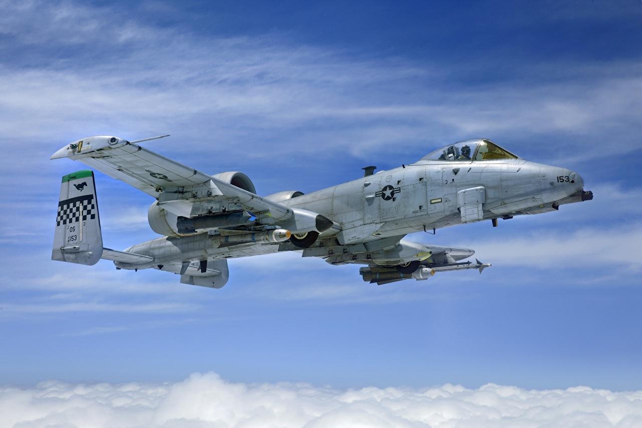 Картинки A-10 Thunderbolt II Штурмовики Самолеты американская AGM-65 Maverick, AIM-9 Sidewinder Авиация Тандерболт II 2 Американские американский