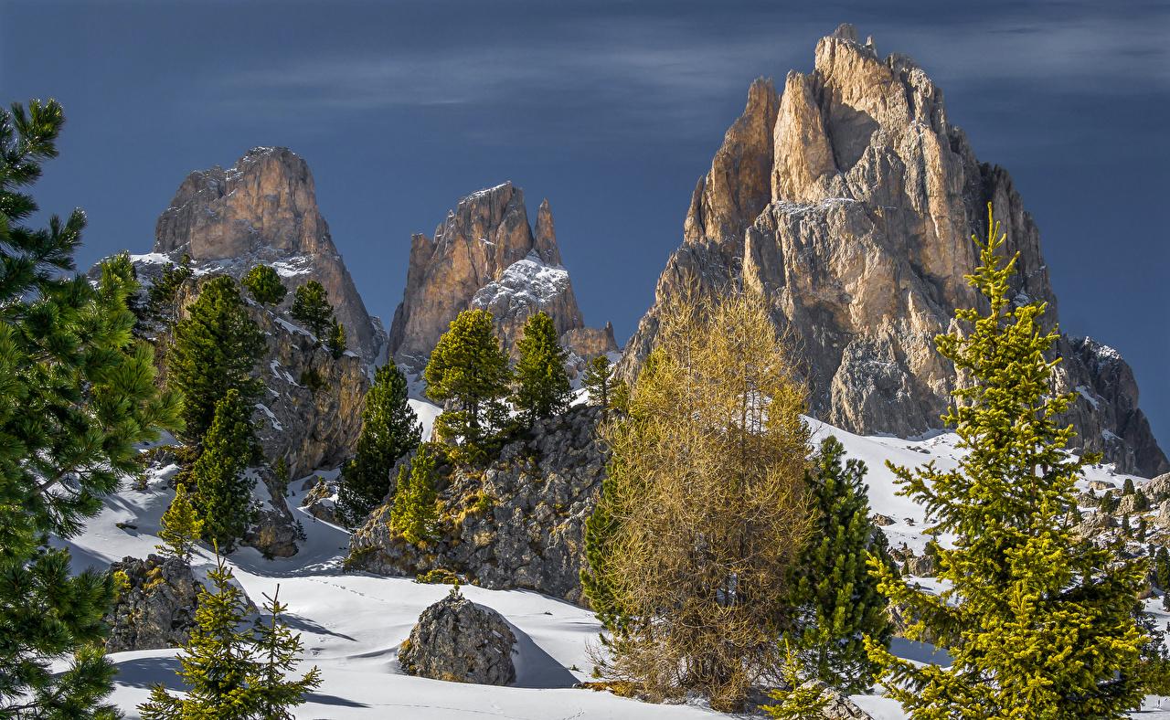 Обои для рабочего стола альп Италия Canazei Trentino ели Зима Утес Природа снега Альпы Ель скале Скала скалы зимние Снег снегу снеге