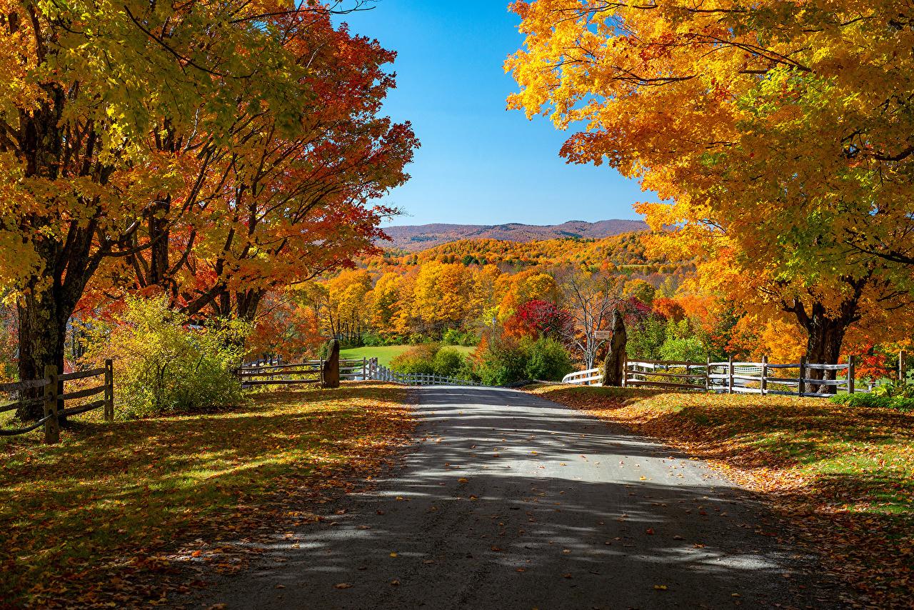 Картинки США Листва Woodstock, Vermont Осень Природа Дороги ограда Деревья лист штаты Листья америка осенние Забор забора забором дерево дерева деревьев