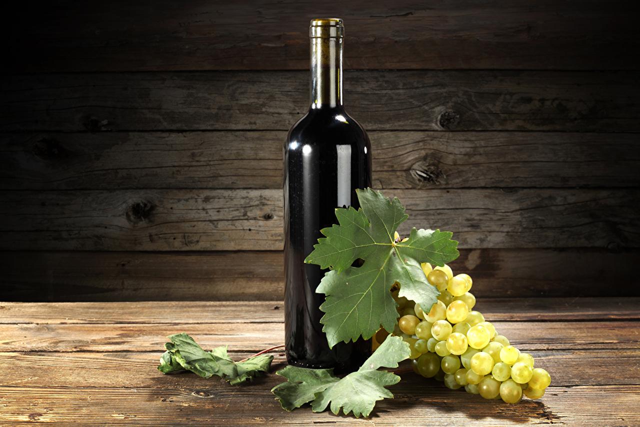 Фотографии Листья Вино Виноград Еда Бутылка Доски Листва Пища Продукты питания