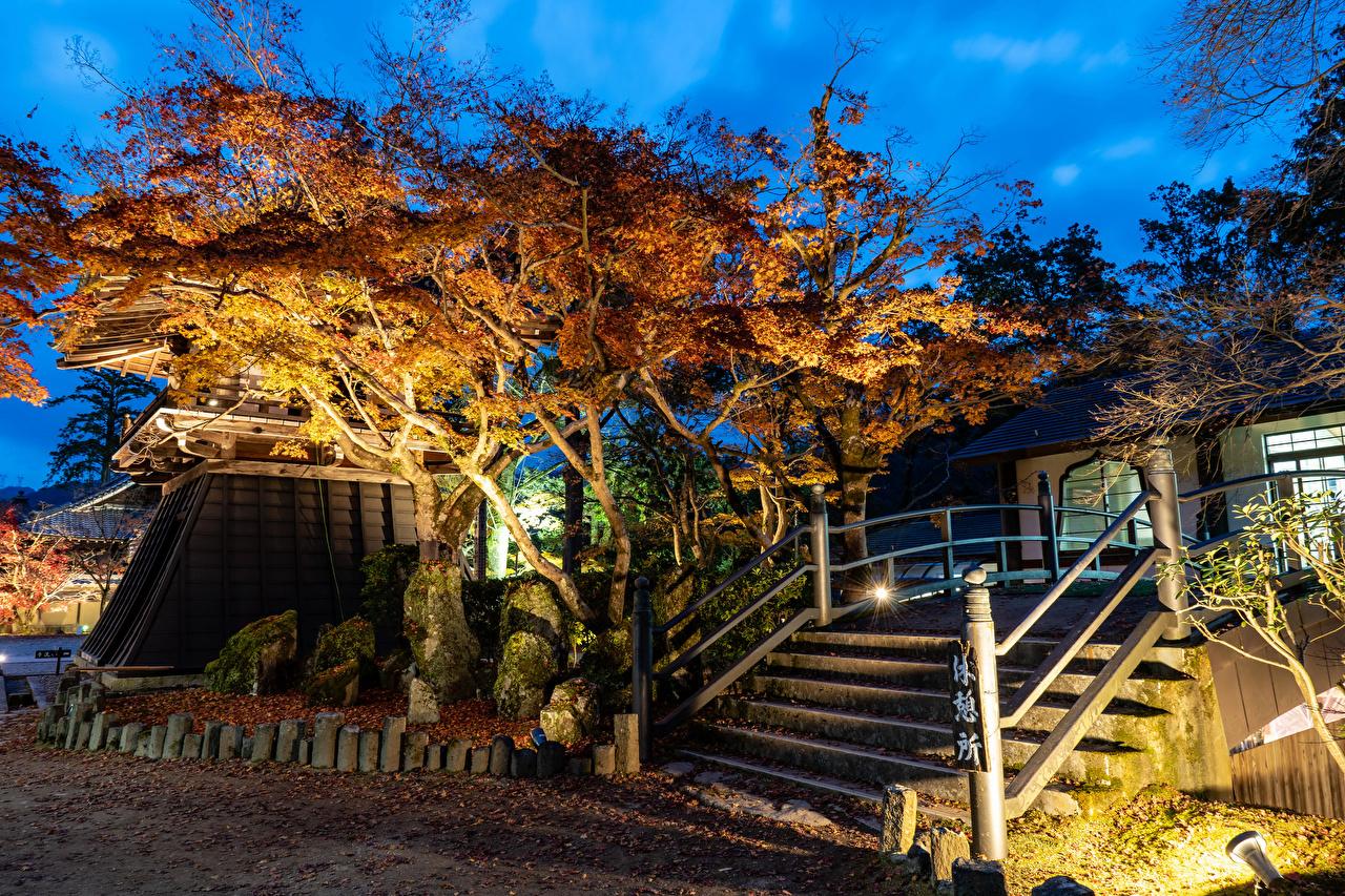 Картинка Листва Япония Shiga Осень Природа Лестница Парки Вечер Деревья Листья осенние