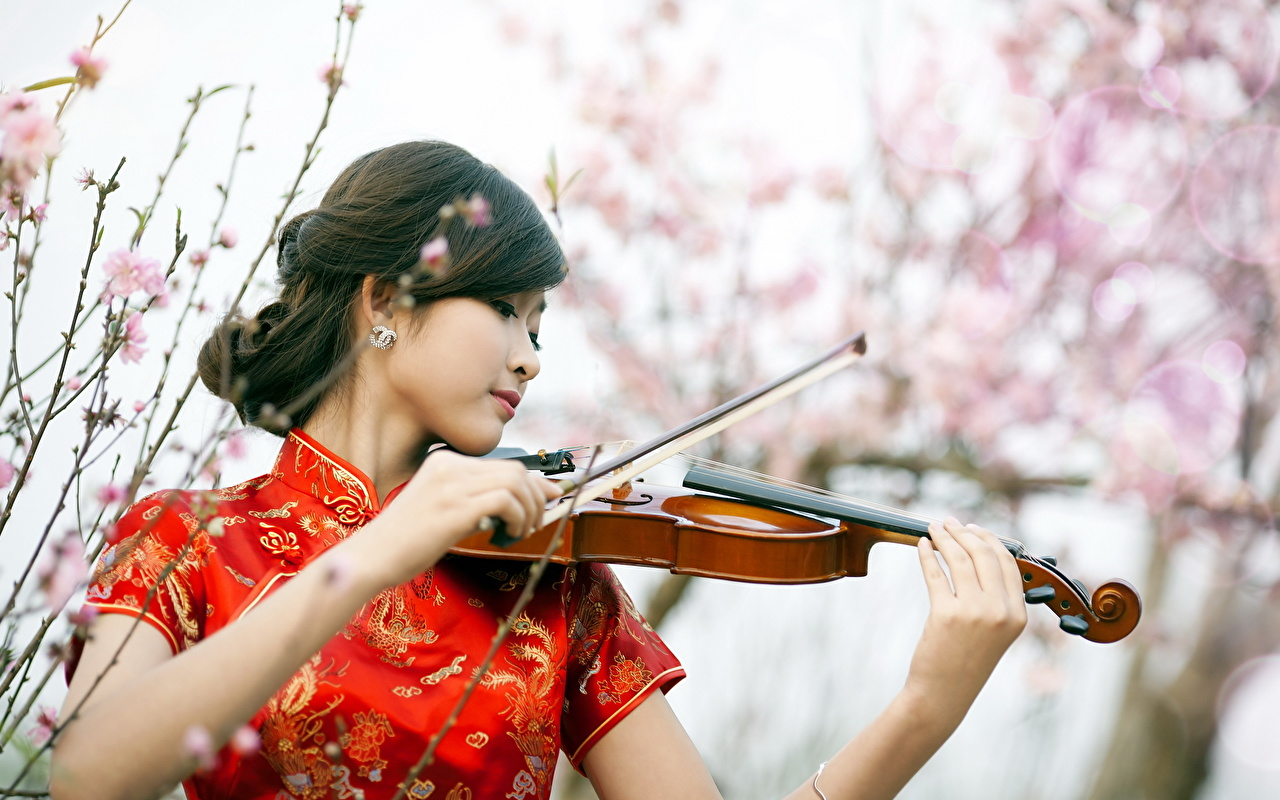 Фотография скрипка брюнетки Размытый фон молодые женщины Азиаты рука Музыкальные инструменты Скрипки брюнеток Брюнетка боке девушка Девушки молодая женщина азиатка азиатки Руки
