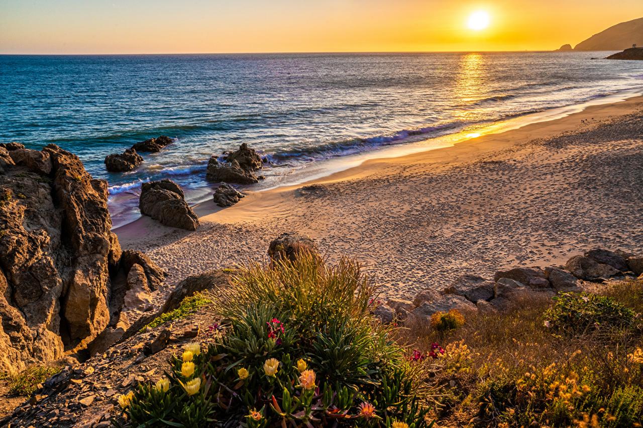 Фотография калифорнии штаты Malibu Beach след пляже Природа Рассветы и закаты Побережье Калифорния США америка Следы Пляж пляжа пляжи рассвет и закат берег