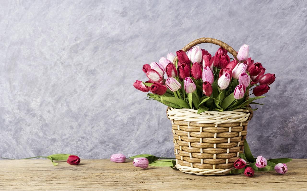 Фотография тюльпан Цветы Корзина Шаблон поздравительной открытки Тюльпаны цветок корзины Корзинка