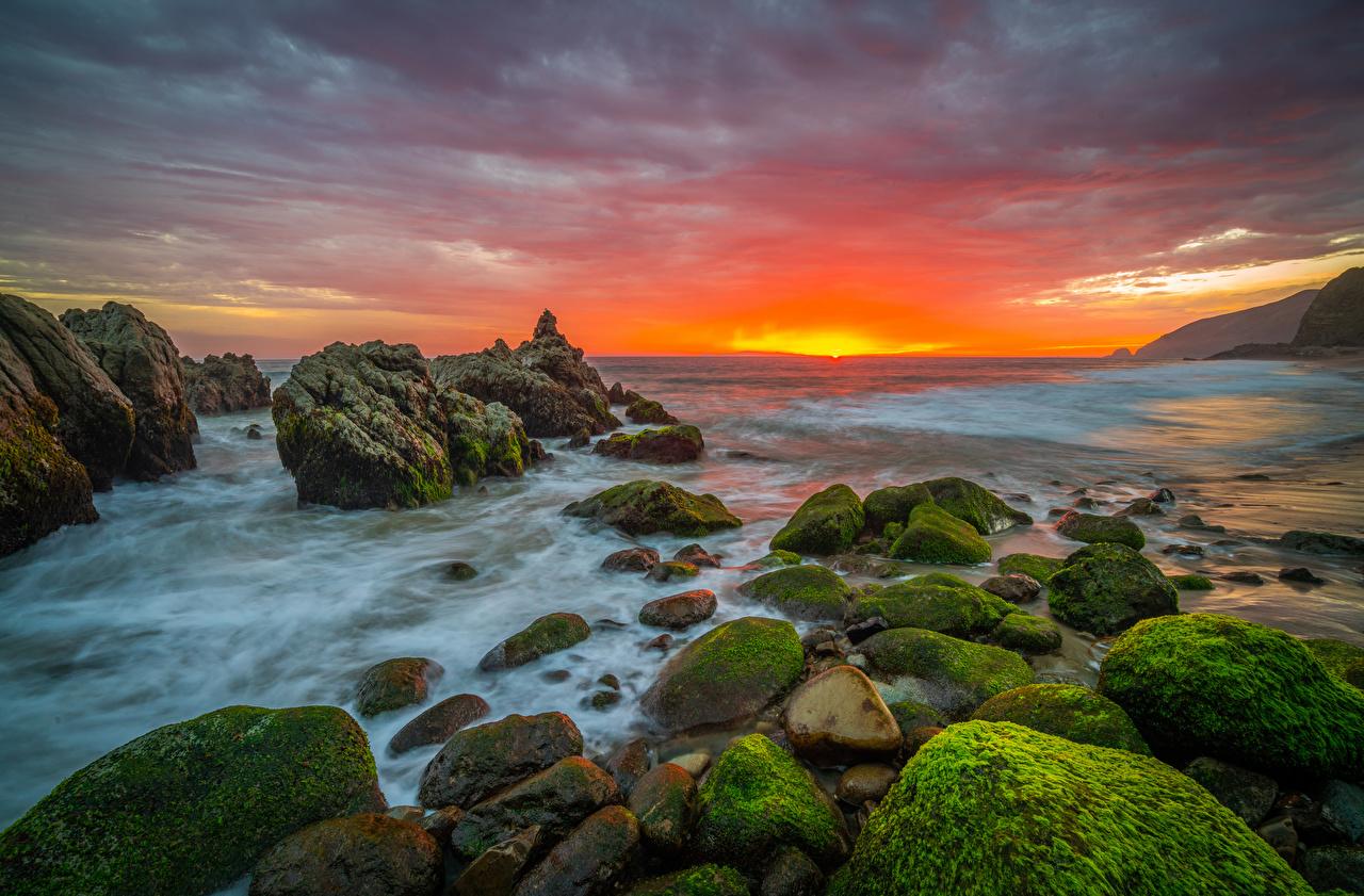 Обои для рабочего стола Калифорния штаты Природа Рассветы и закаты Мох Камень Побережье калифорнии США америка рассвет и закат мха мхом берег Камни