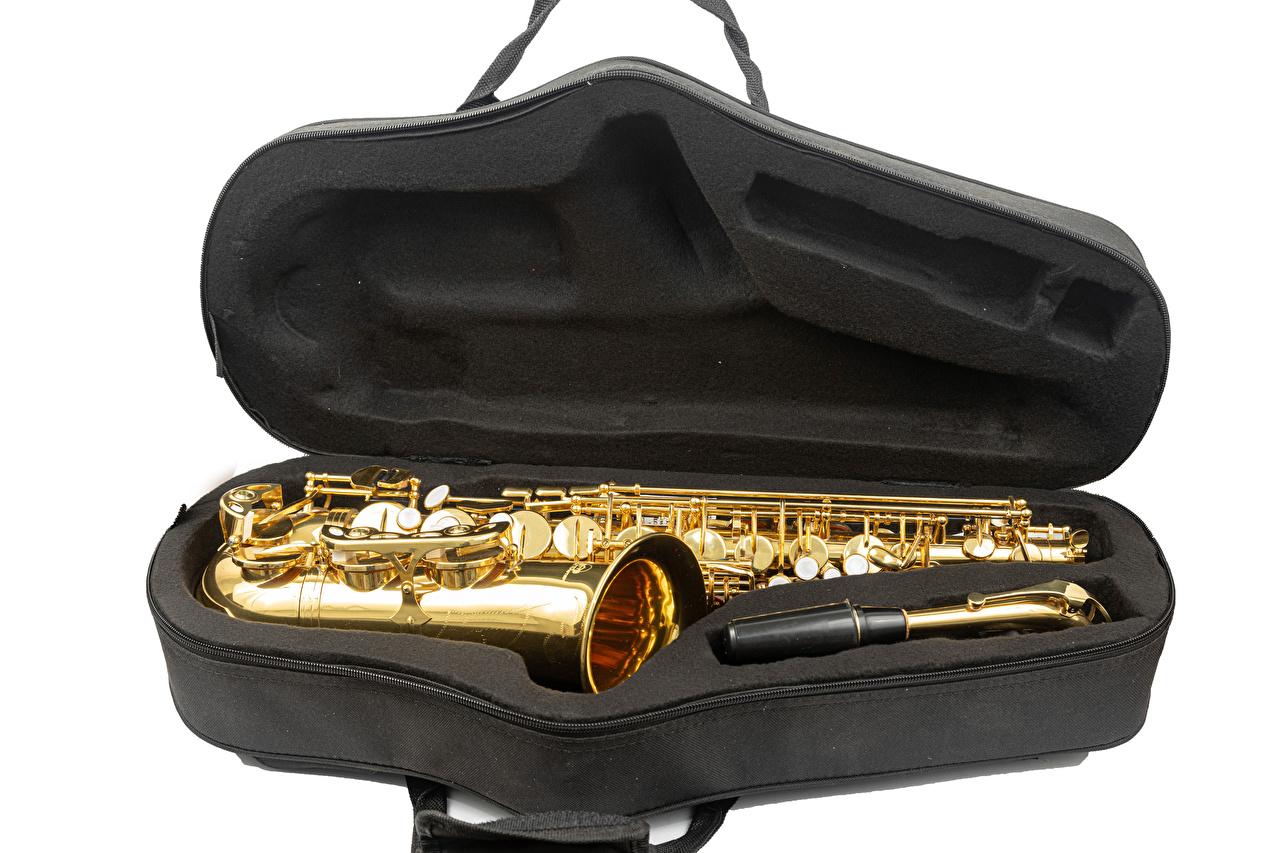 Фотография Saxophone Музыка белом фоне Музыкальные инструменты Белый фон белым фоном
