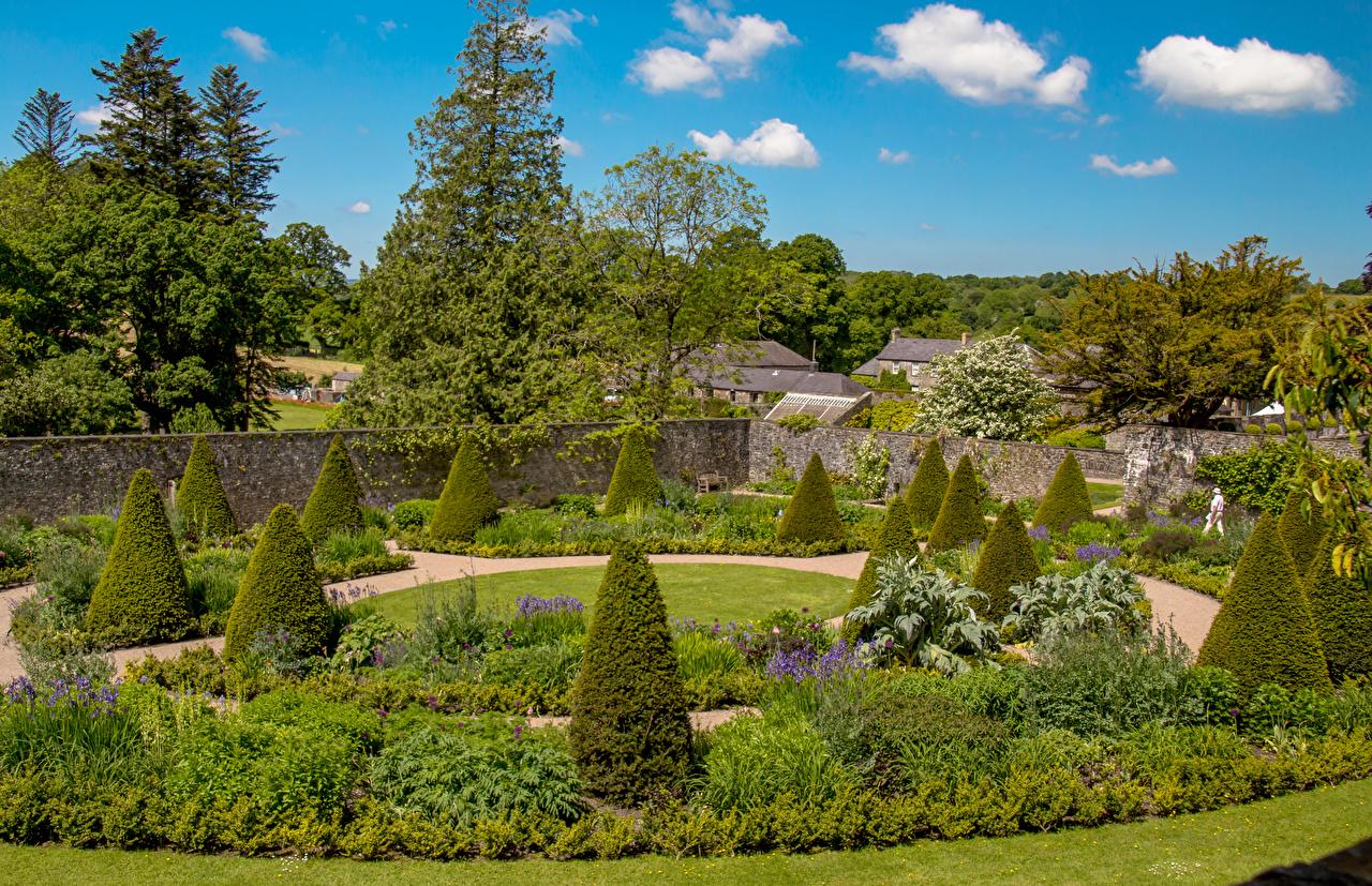 Обои для рабочего стола Великобритания Aberglasney Gardens Природа Сады Кусты дизайна кустов Дизайн