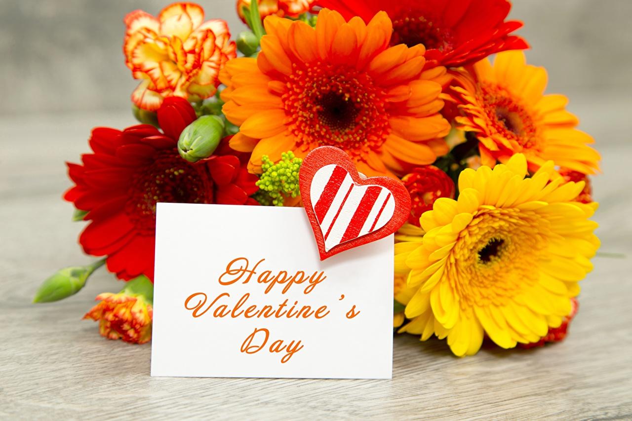 Фотография День всех влюблённых английская гербера слова цветок День святого Валентина инглийские Английский Герберы Цветы текст Слово - Надпись