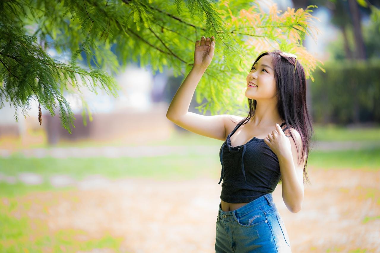 Фотография Брюнетка Улыбка Размытый фон Девушки азиатки Руки Ветки брюнетки брюнеток улыбается боке девушка молодая женщина молодые женщины Азиаты азиатка рука ветвь ветка на ветке