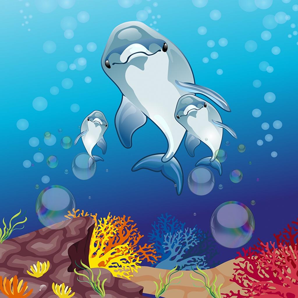 Фото Дельфины Подводный мир Векторная графика