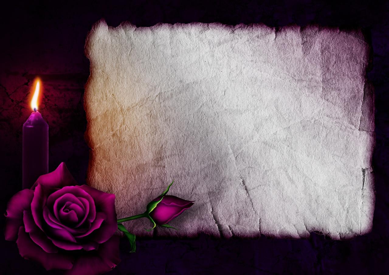 Обои День святого Валентина Лист бумаги Розы Огонь Свечи Шаблон поздравительной открытки День всех влюблённых Пламя