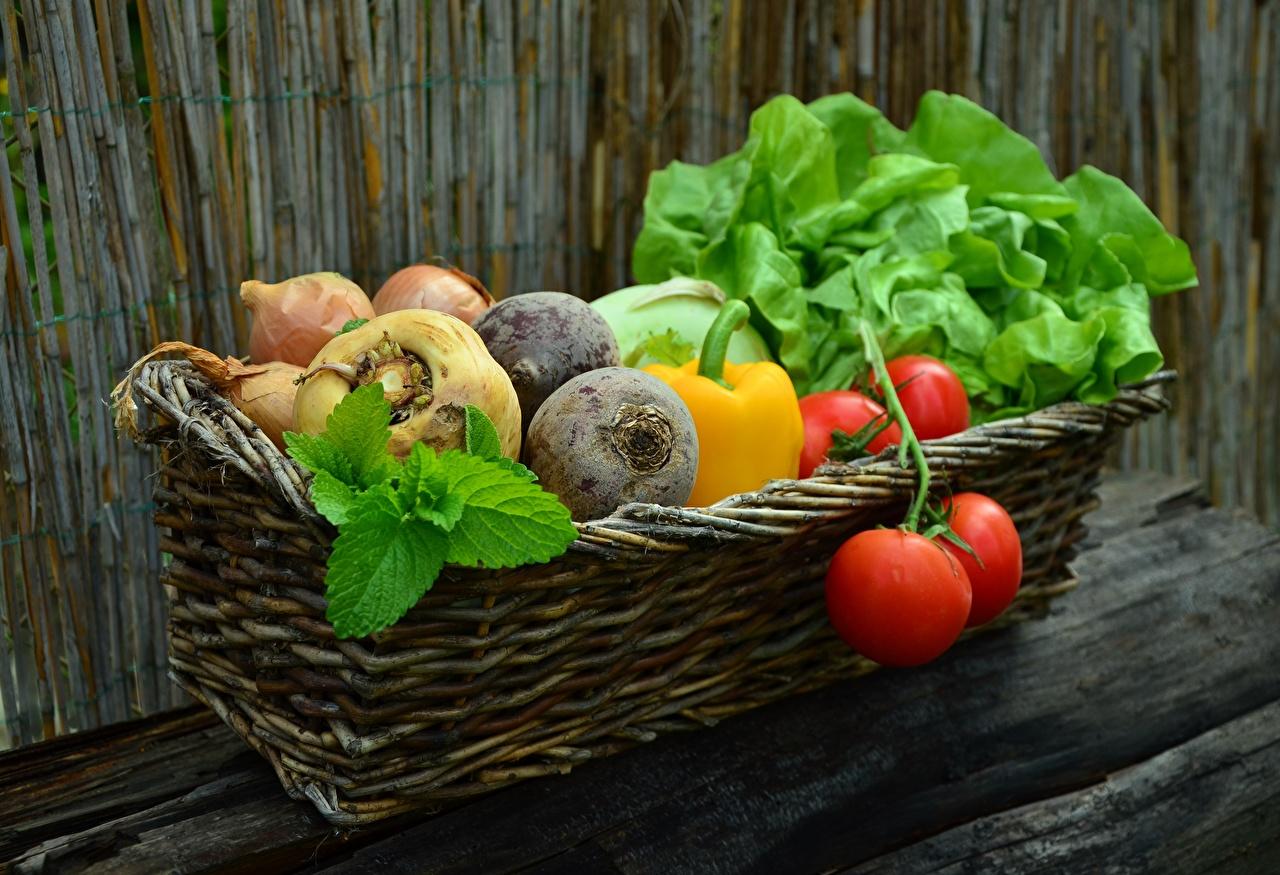 Обои для рабочего стола Помидоры Корзинка Пища Овощи Томаты корзины Корзина Еда Продукты питания