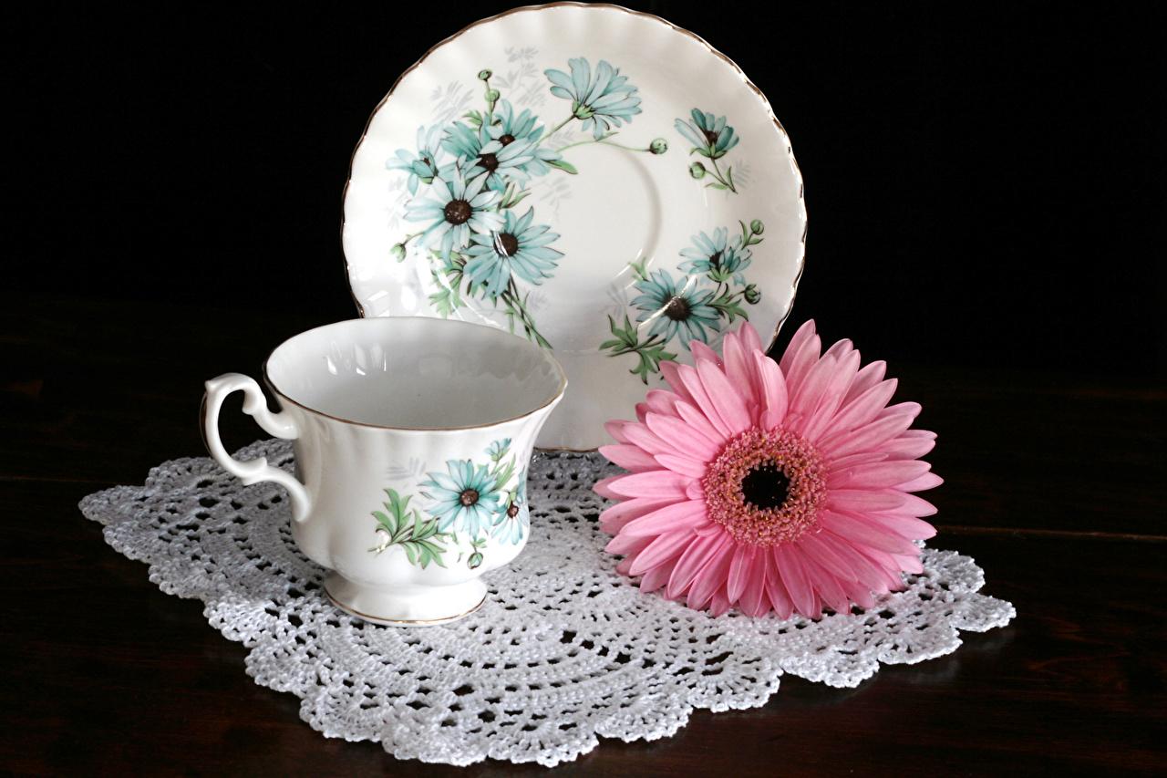Фотографии розовых гербера цветок Чашка Тарелка Натюрморт Черный фон Розовый розовые розовая Герберы Цветы чашке тарелке на черном фоне