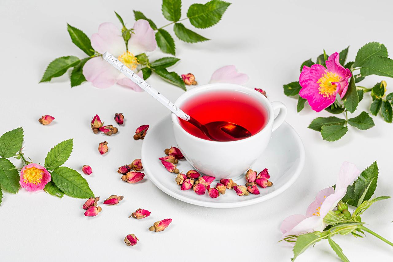 Картинки Чай роза лепестков Еда чашке Ветки Розы Лепестки Пища Чашка ветвь ветка на ветке Продукты питания