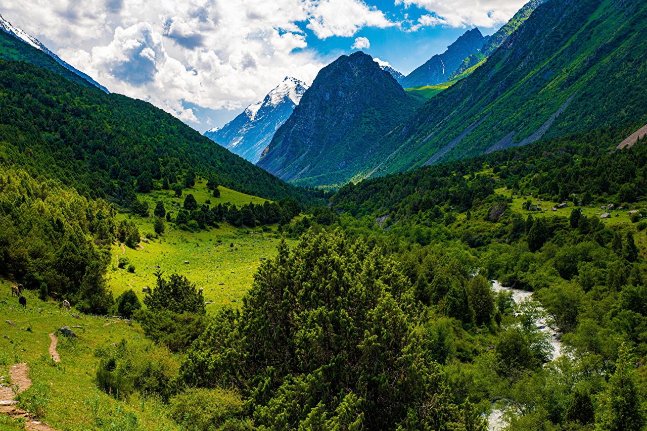 Фотография Issyk-Ata Gorge, Kyrgyzstan Горы Природа Облака дерево гора облако дерева облачно Деревья деревьев