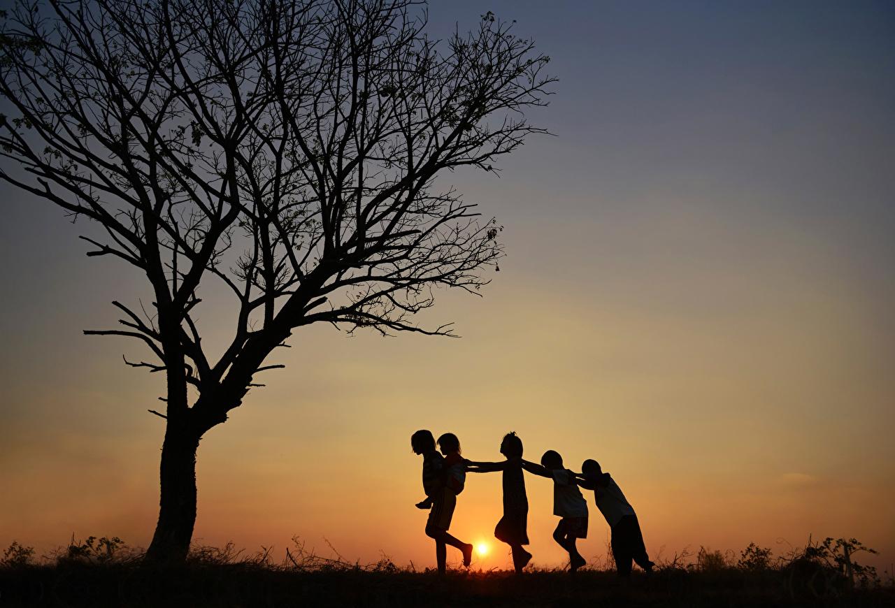 Фотография Силуэт Ребёнок Рассветы и закаты Деревья силуэты силуэта Дети дерево дерева деревьев