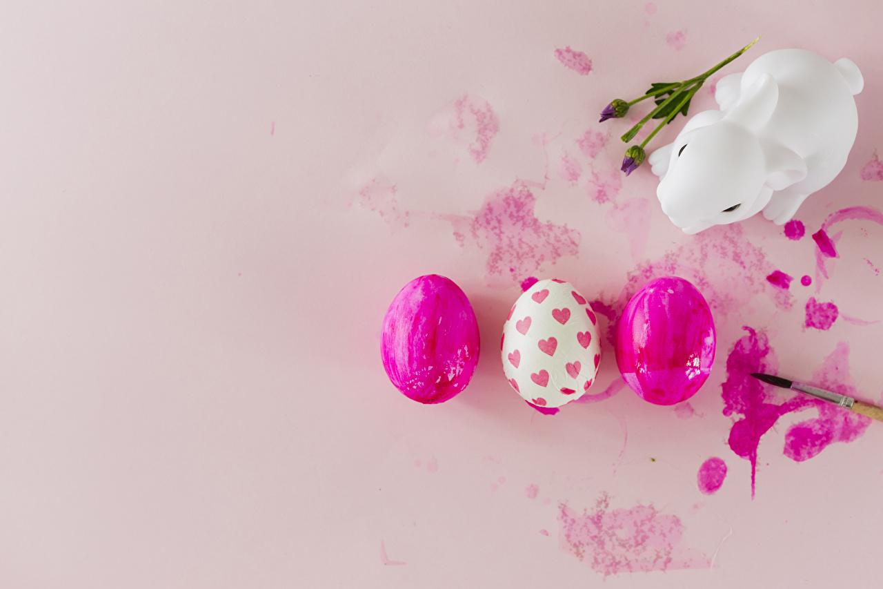 Фотография Пасха Кролики Сердце Яйца втроем Цветной фон сердечко Трое 3