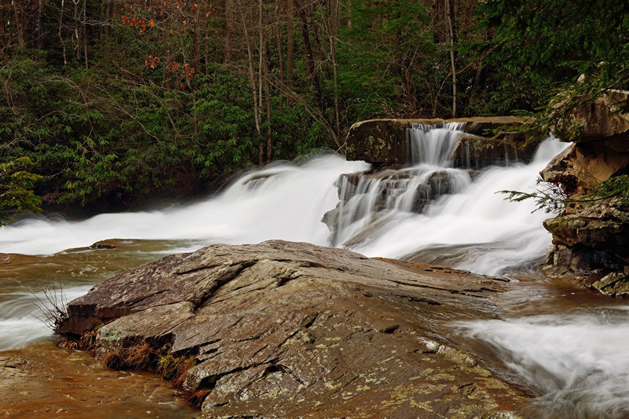 Картинка США Ohiopyle State Park Pennsylvania Природа Водопады Парки штаты