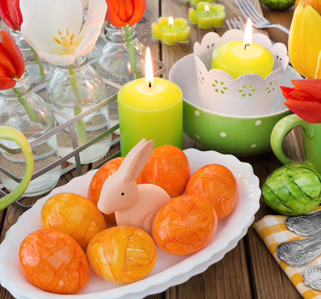 Фотография Пасха Кролики яйцами Свечи яиц Яйца яйцо