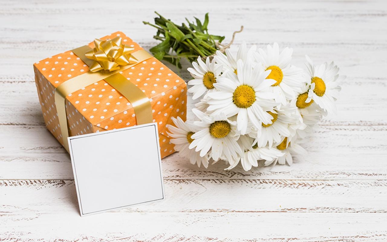 Картинка Цветы Ромашки подарков Шаблон поздравительной открытки цветок Подарки подарок ромашка