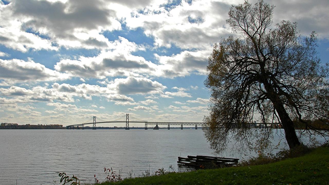 Фотография мост Природа Небо Реки дерева Облака Мосты река речка дерево облако Деревья облачно деревьев