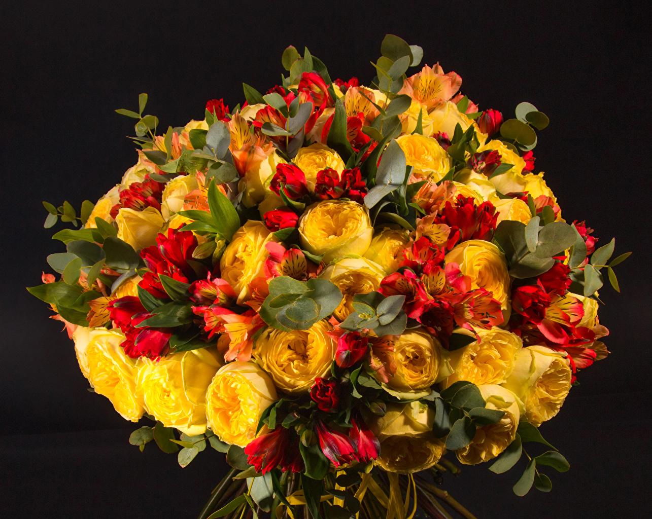 Фото букет пион Цветы Альстрёмерия на черном фоне Букеты Пионы цветок Черный фон