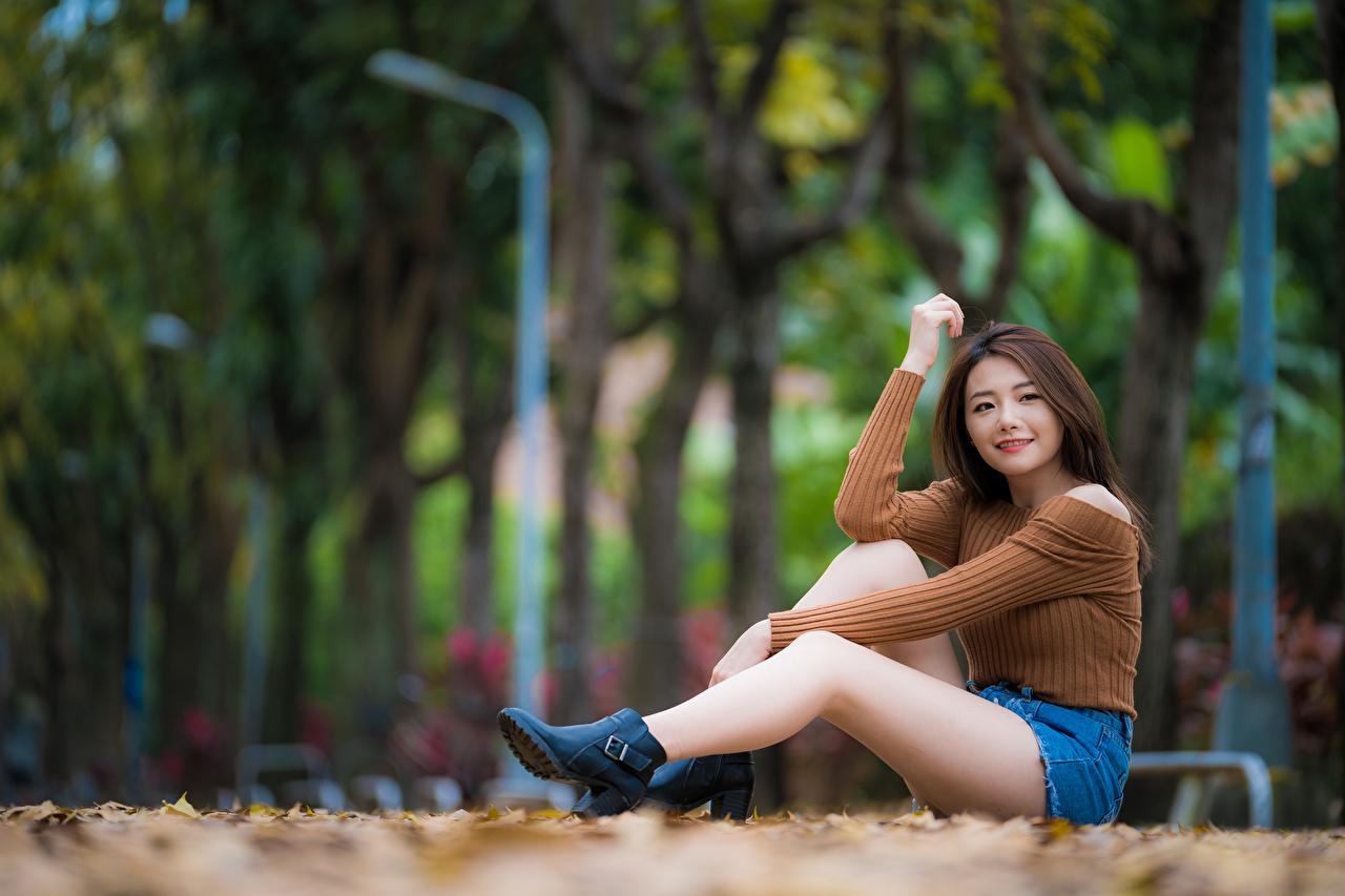 Фотография Размытый фон молодые женщины Ноги Азиаты Свитер шорт сидящие Взгляд боке девушка Девушки молодая женщина ног азиатки азиатка свитере свитера сидя Сидит Шорты шортах смотрит смотрят