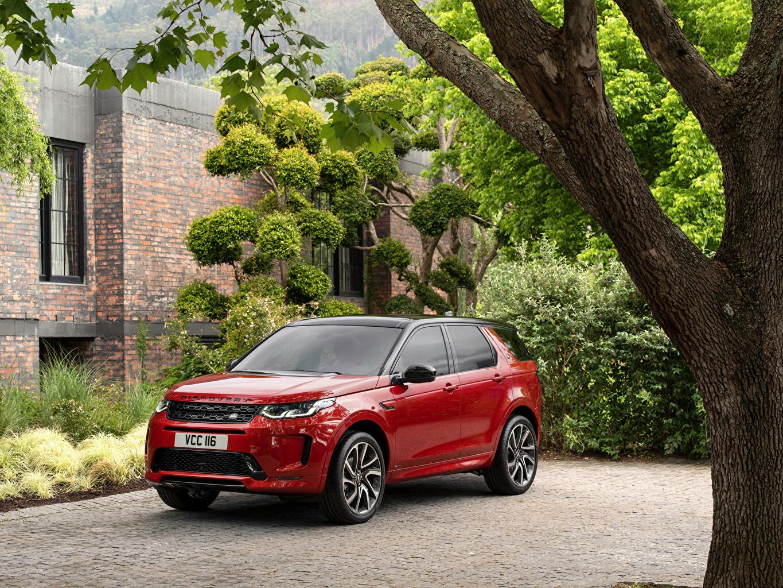 Картинка Land Rover SUV 2019 Discovery Sport D180 HSE R-Dynamic Worldwide Гибридный автомобиль красная авто Металлик Range Rover Внедорожник красных красные Красный машина машины автомобиль Автомобили