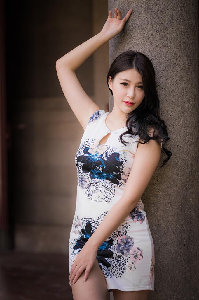 Фотография Поза Девушки азиатки смотрят платья  для мобильного телефона позирует девушка молодая женщина молодые женщины Азиаты азиатка Взгляд смотрит Платье
