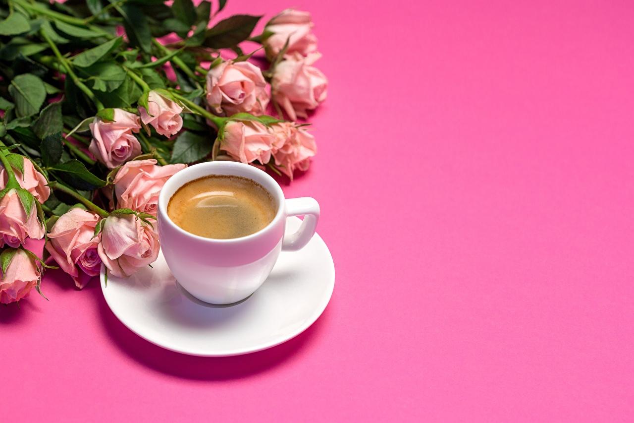 Фото букет Кофе Розы розовая цветок Чашка Розовый фон Букеты роза Розовый розовые розовых Цветы чашке