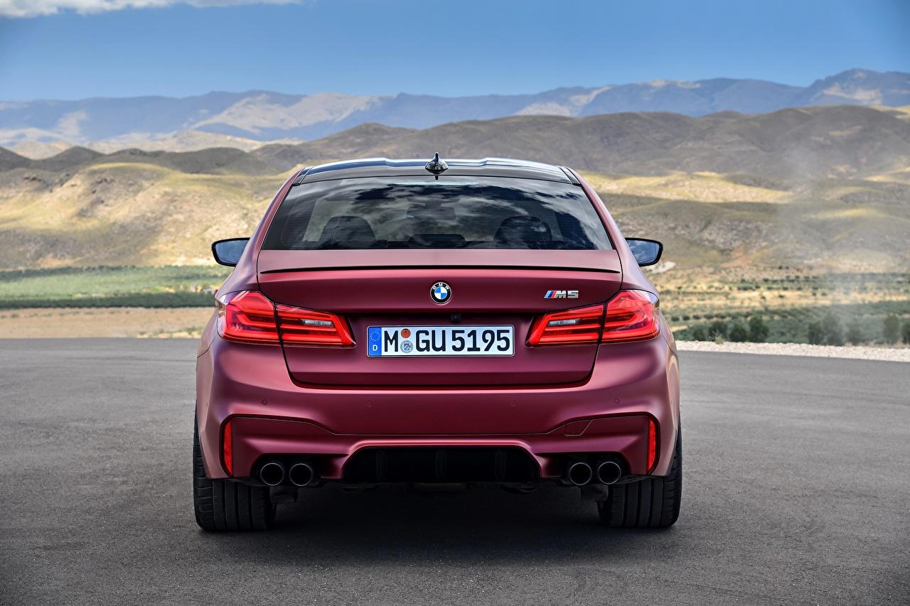 Фотография БМВ 2017 F90 M5 First Edition Бордовый Сзади Автомобили BMW бордовая бордовые темно красный авто машина машины вид сзади автомобиль