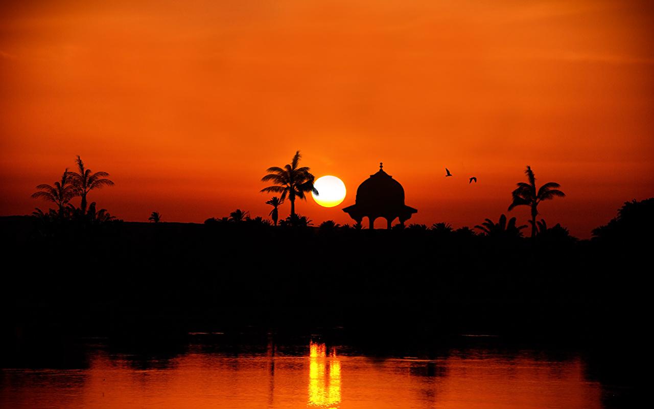 Картинки Египет силуэта the Nile River towards Assuan Солнце Природа рассвет и закат Силуэт силуэты солнца Рассветы и закаты