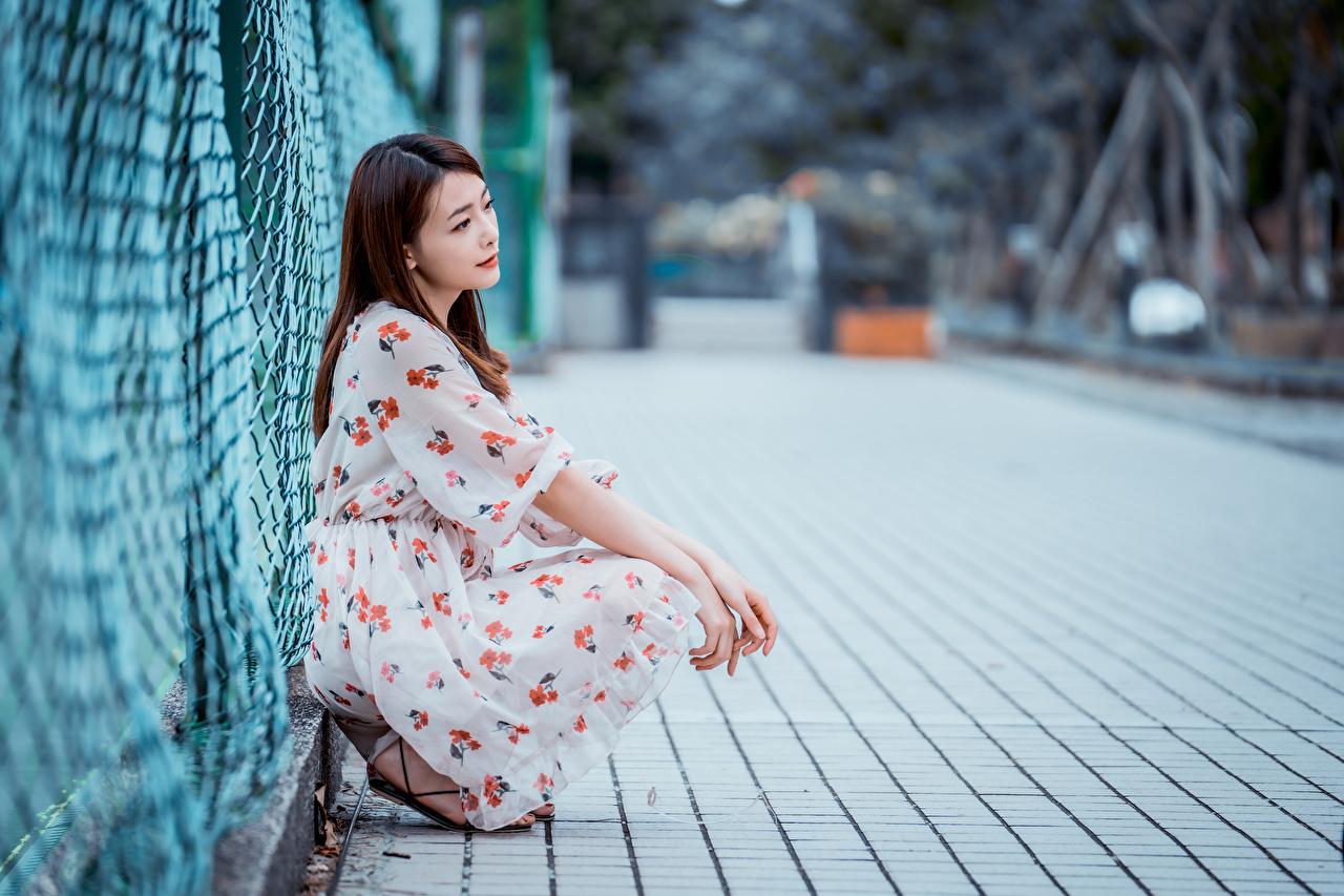 Фотография шатенки Размытый фон молодая женщина забора азиатка сидя платья Шатенка боке девушка Девушки молодые женщины Забор ограда Азиаты азиатки забором Сидит сидящие Платье