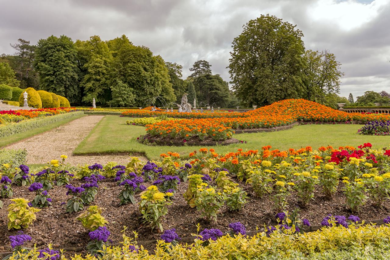 Обои для рабочего стола Англия Waddesdon Manor gardens Природа парк Бархатцы Георгины газоне дизайна Парки Газон Дизайн
