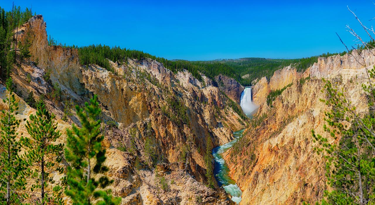 Обои для рабочего стола Йеллоустон штаты скале каньоны Природа Водопады лес Парки США америка Утес Скала скалы Каньон каньона парк Леса