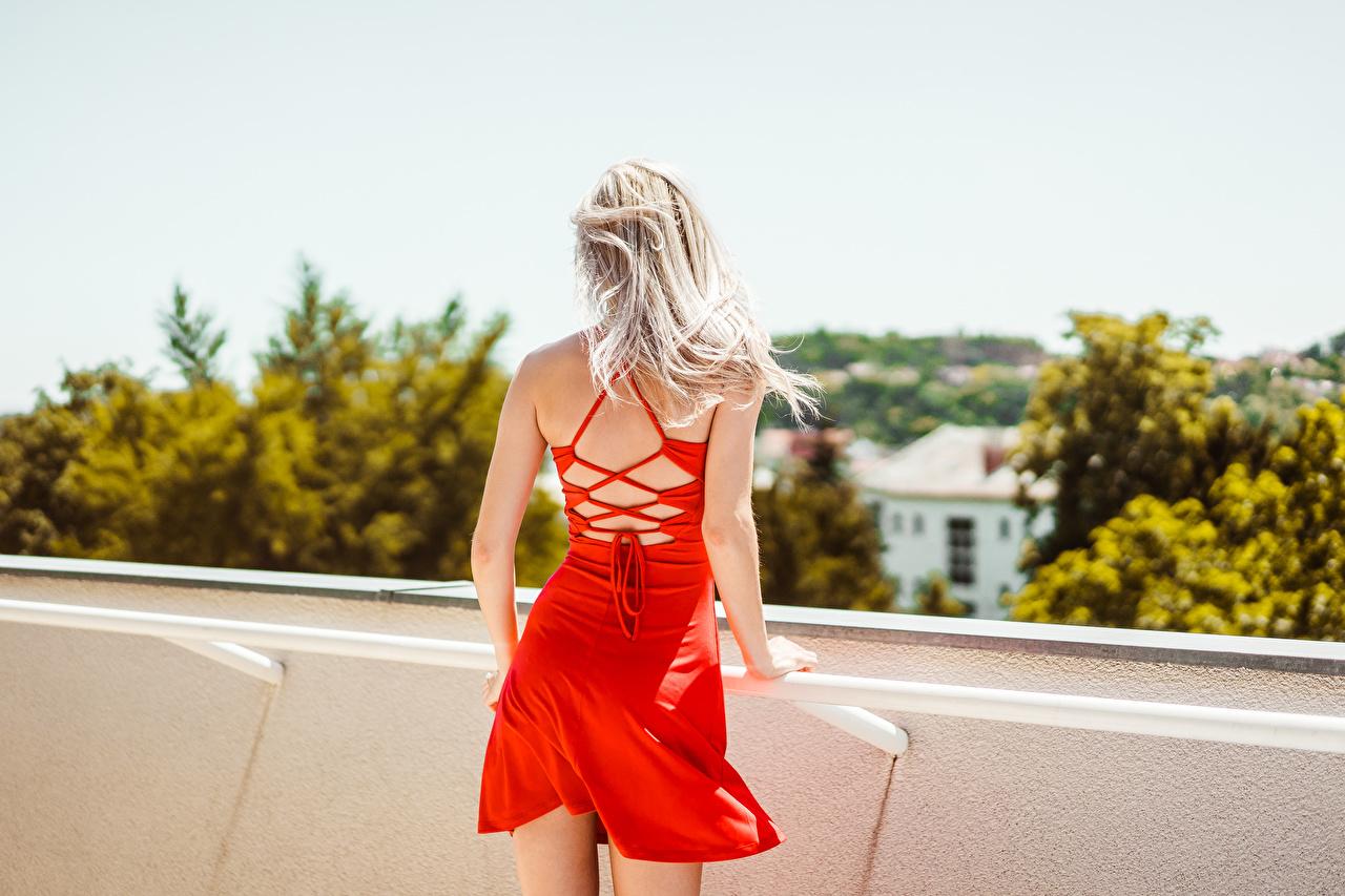 Обои для рабочего стола блондинок красные молодые женщины Сзади Платье Блондинка блондинки Девушки девушка красных красная Красный молодая женщина вид сзади платья