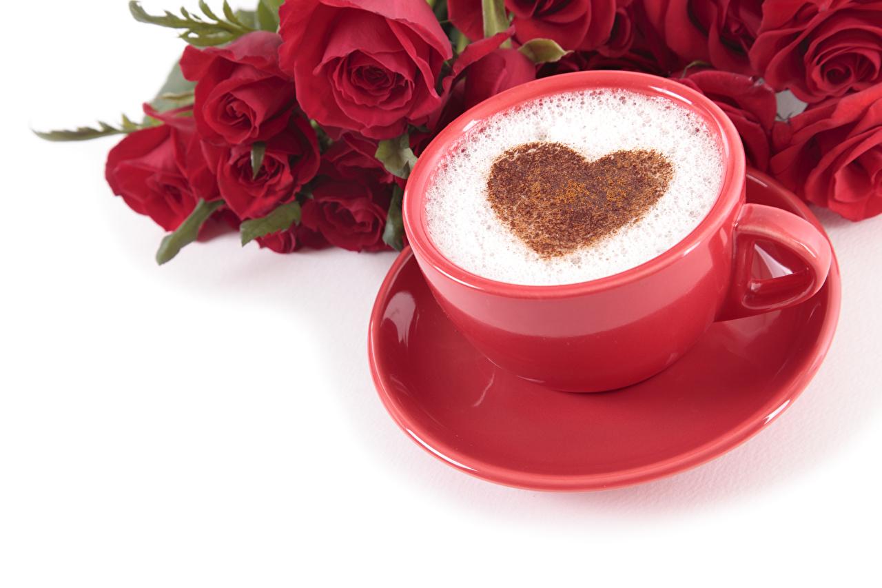 Картинки День святого Валентина Сердце Розы Кофе Красный Капучино Цветы Еда Пена Чашка Белый фон День всех влюблённых сердечко Пища Продукты питания