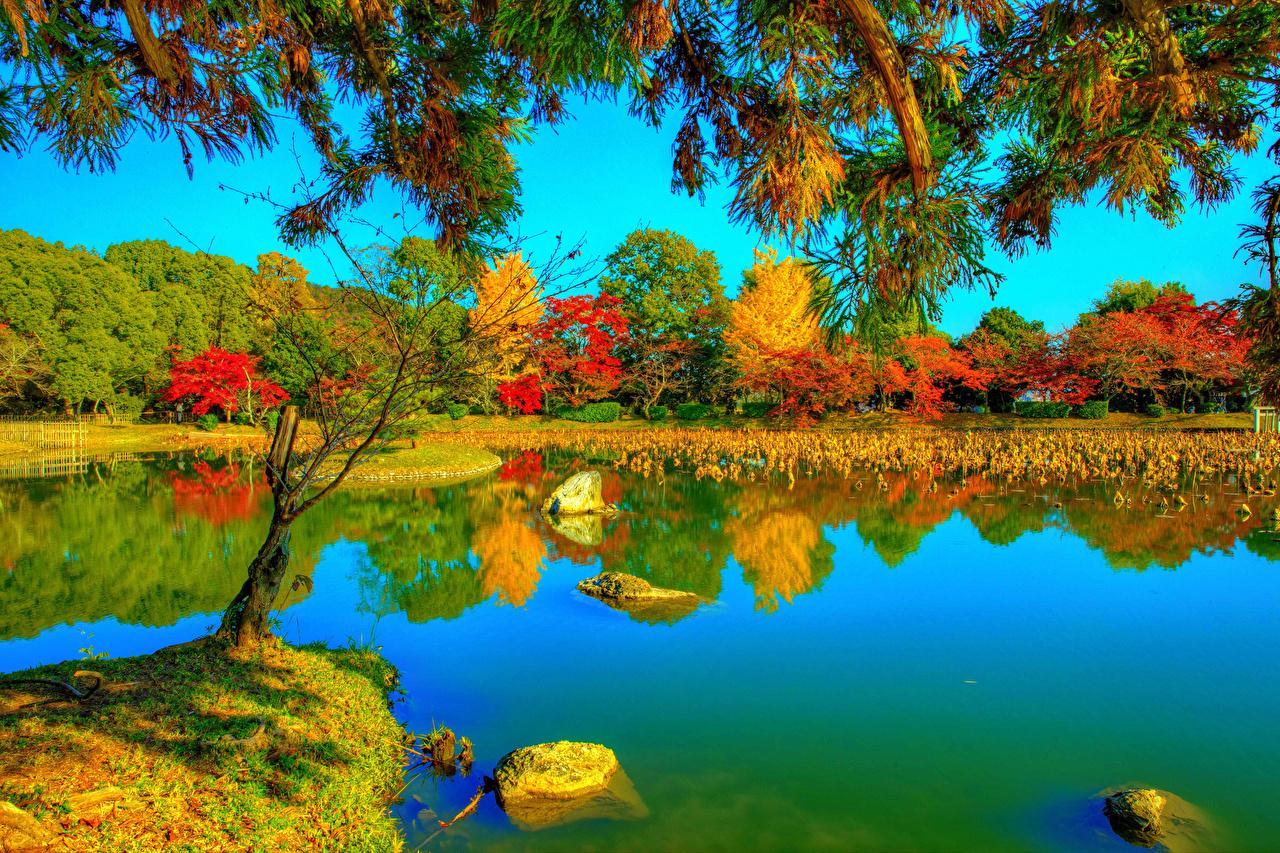 Обои для рабочего стола Киото Япония Daikaku-ji HDRI Природа осенние Парки Реки Ветки Деревья HDR Осень парк река ветка ветвь речка на ветке дерево дерева деревьев