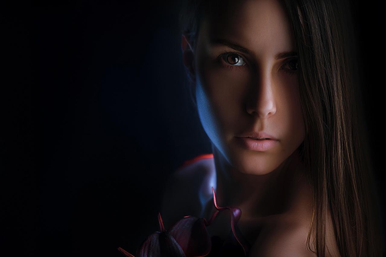 Фото Alexander Drobkov-Light, Nelya Pirozhkova Красивые Лицо волос девушка Взгляд красивый красивая лица Волосы Девушки молодые женщины молодая женщина смотрят смотрит