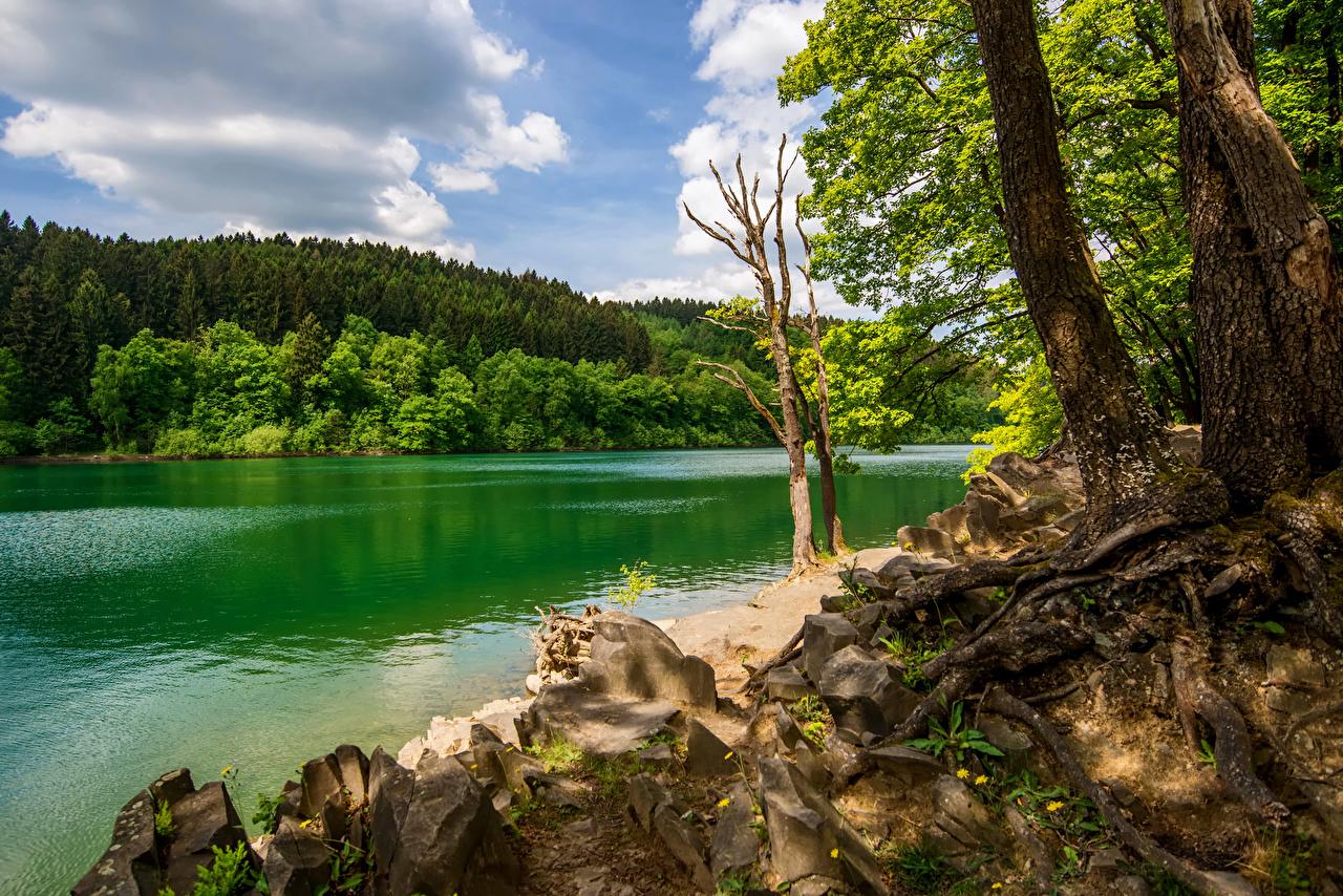 Обои для рабочего стола Германия Sauerland Природа лес речка Леса река Реки
