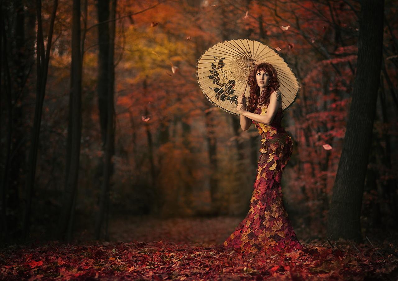 Картинка Листва Девушки осенние Креатив зонтом платья лист Листья Осень девушка молодые женщины молодая женщина оригинальные Зонт зонтик Платье