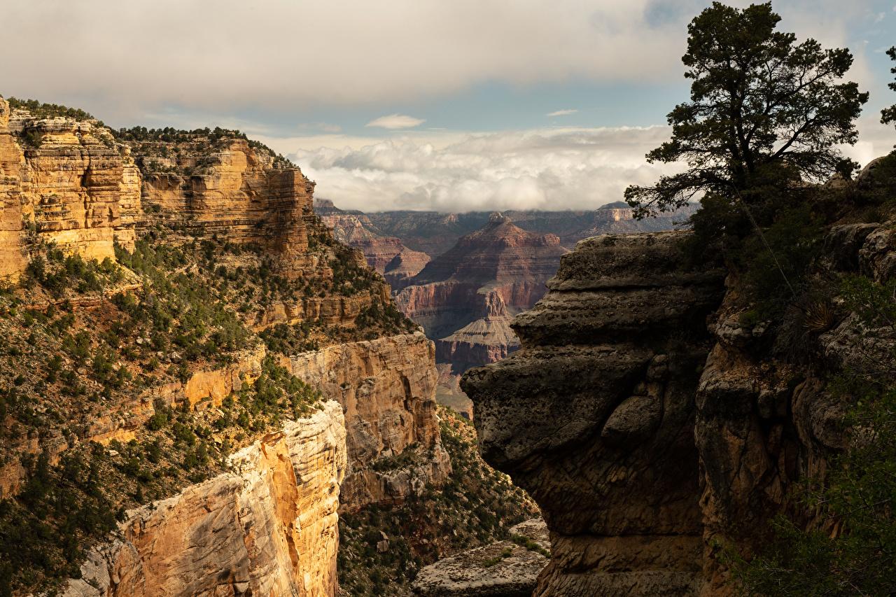 Обои для рабочего стола Гранд-Каньон парк США Горы Каньон Природа парк штаты америка гора каньоны каньона Парки