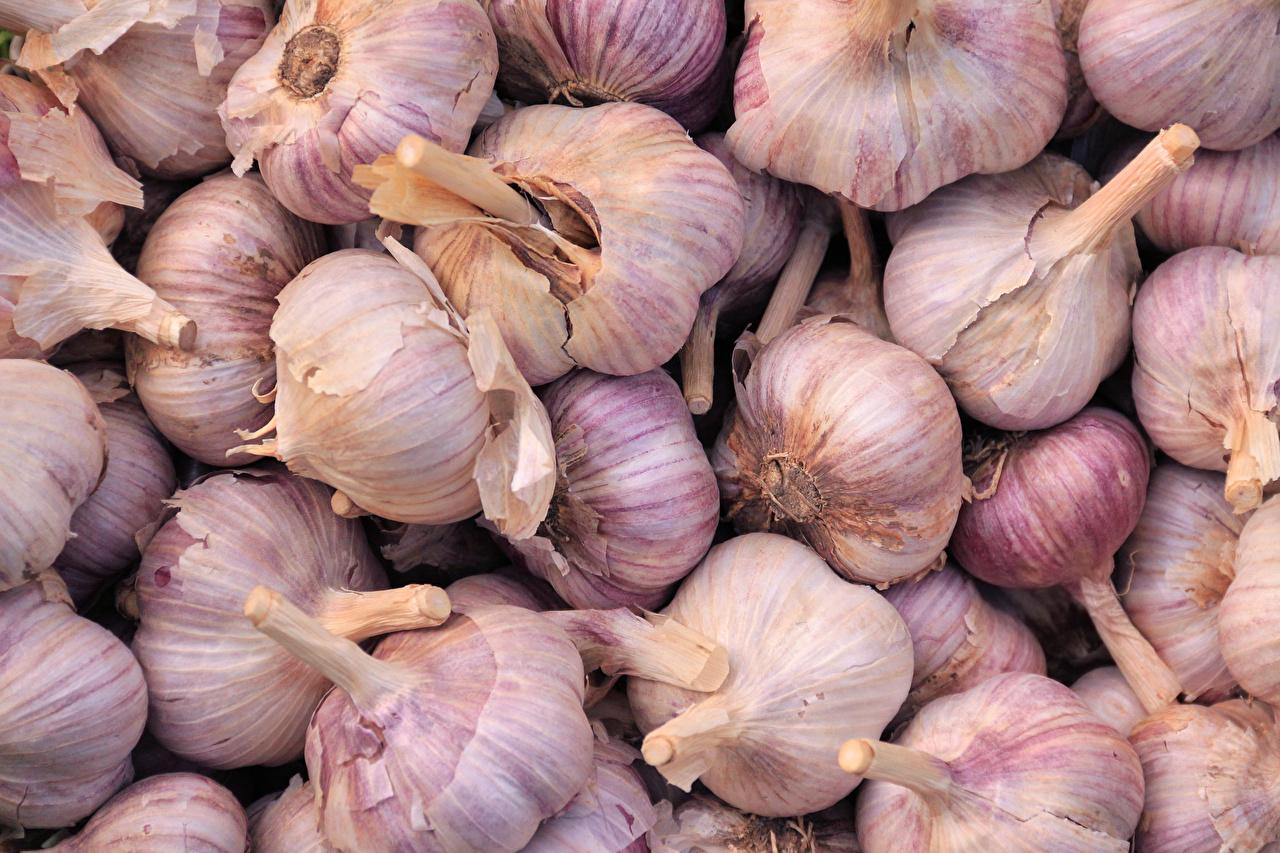 Фотографии Текстура Чеснок Пища вблизи Еда Продукты питания Крупным планом