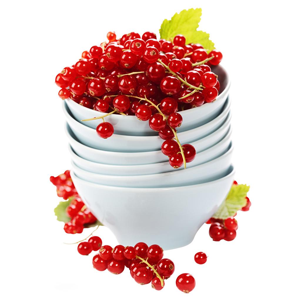 Картинка красная Миска Смородина Ягоды Продукты питания Белый фон Красный красные красных Еда Пища белом фоне белым фоном