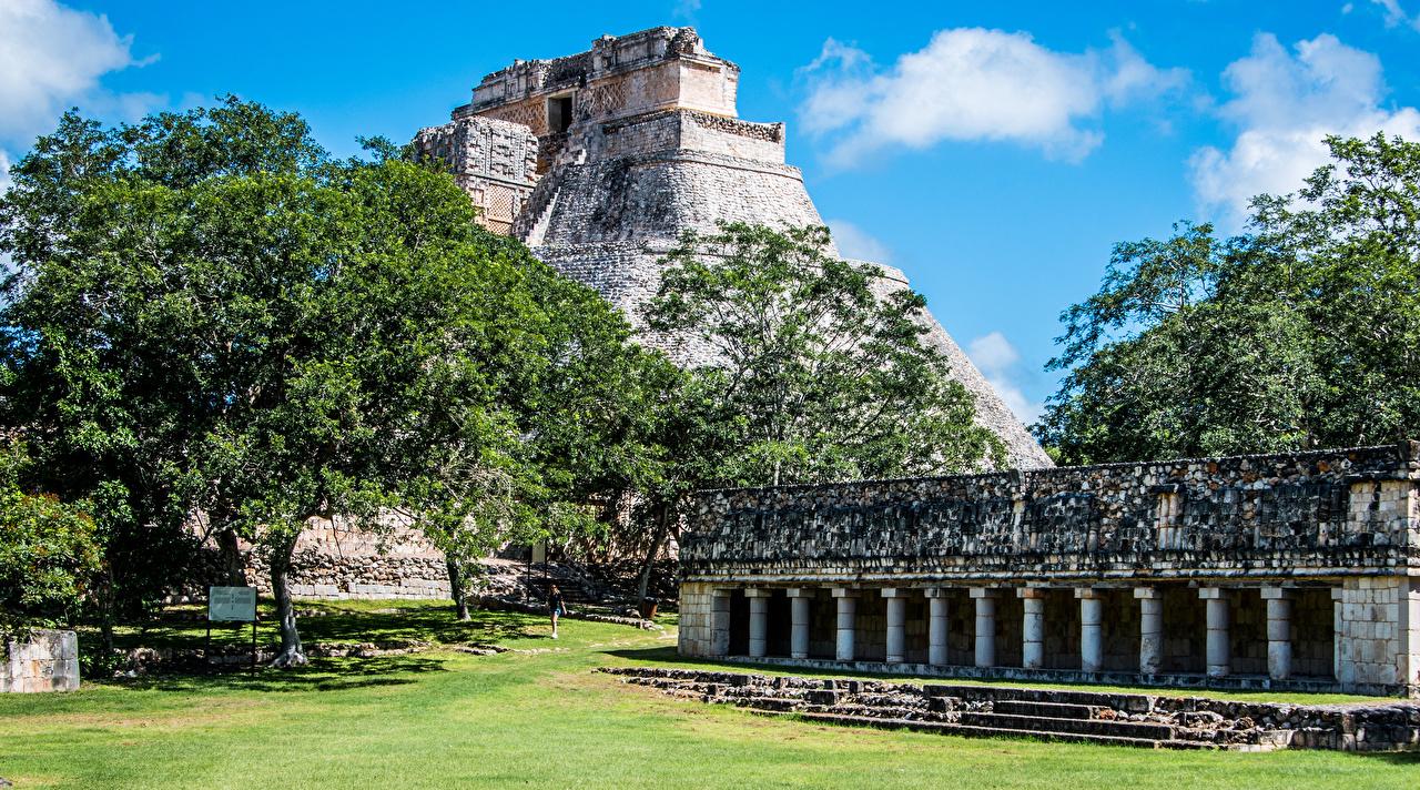 Картинка Мексика Uxmal Column Building пирамиды город дерево Пирамида Города дерева Деревья деревьев