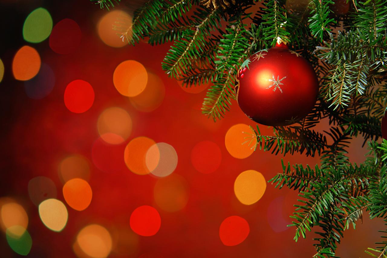 Картинка Рождество Шар ветвь Новый год Ветки ветка Шарики на ветке