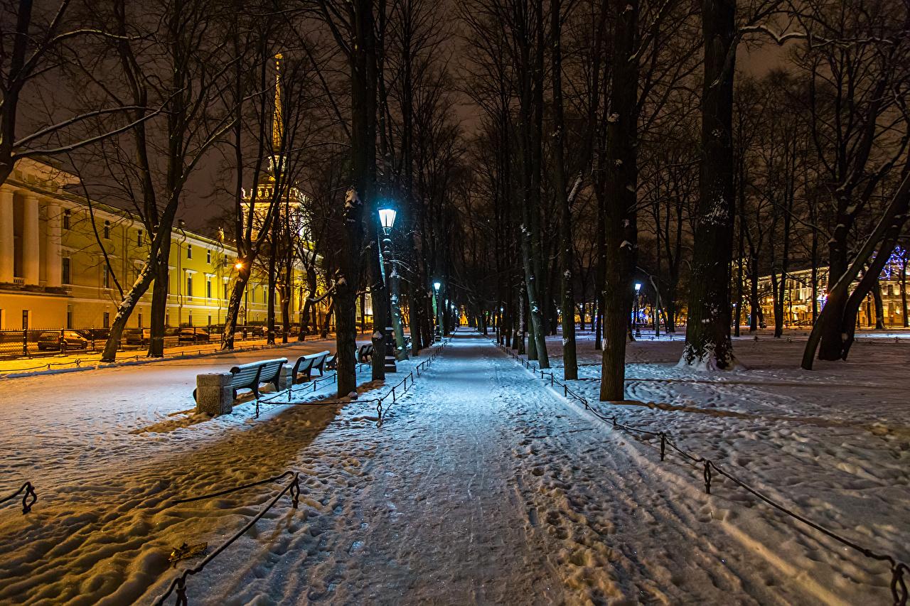 Обои для рабочего стола Санкт-Петербург Россия Alexander Garden зимние Природа Снег парк в ночи Дома Деревья Зима снеге снегу снега Парки Ночь ночью Ночные дерева дерево Здания деревьев